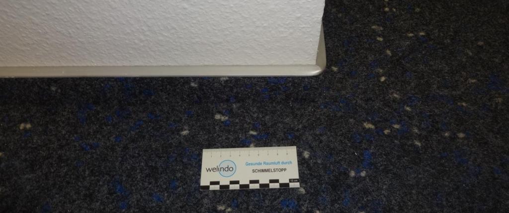 Lösemittel aus Teppichboden oder Klebern und Farben